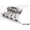 Skunk2 Pro Series Intake Manifold - EVO 8/9