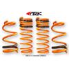 ARK Performance GT-F Lowering Springs - EVO X