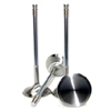 GSC Chrome Polished Super Alloy Exhaust Valve Set of 8 - 29mm Head (STD) - EVO X