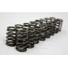 GSC Beehive Valve Springs w/ Titanium Retainer Valvetrain Kit  - EVO 8/9