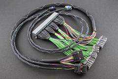 Boomslang Haltech Elite 1500 EVO8-260 Harness