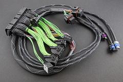 Boomslang MoTeC M84 EVO8 Harness