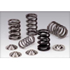 Supertech Dual Valve Springs + Titanium Retainers Set - EVO 8/9